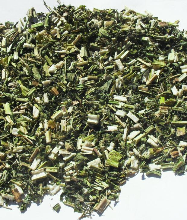 Marihuanilla (Leonorus Cardiaca) secca tagliata