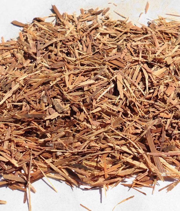 Catuaba (Erythroxylum Vacciniifolium) secco tagliato