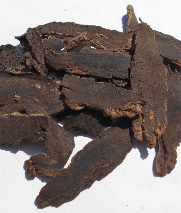 Artiglio del diavolo (Harpagophytum Procumbens) secco intero