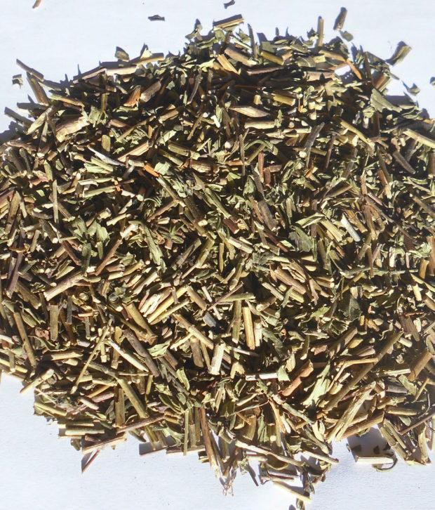 Skullcap (Scutellaria laterifolia) parte aerea tritata