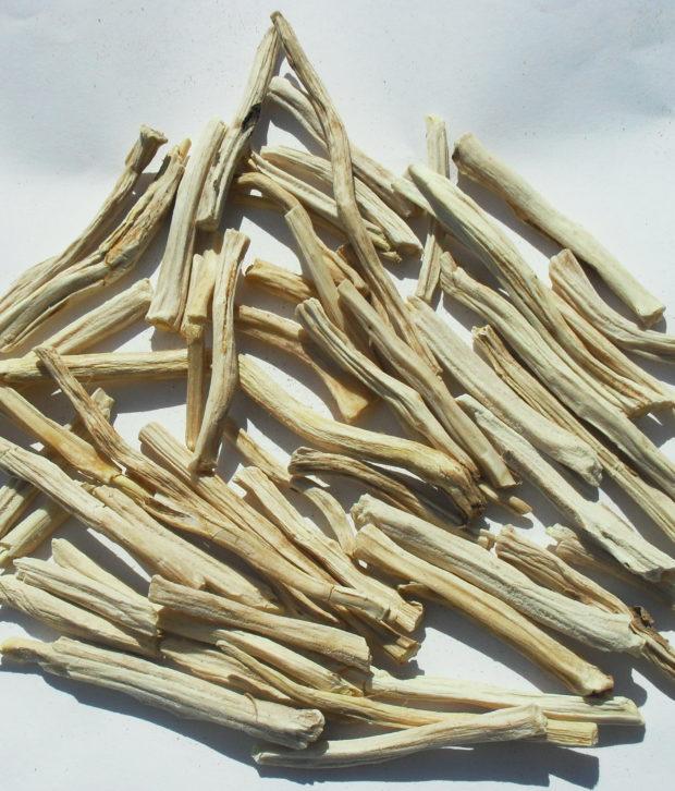 Shavatari (Asparagus Racemosus) intero