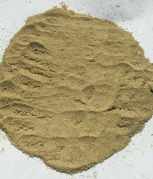 Uzara (Xysmalobium Undulatum) polvere
