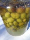 Olive (Olea Europaea) salamoia tradizionale