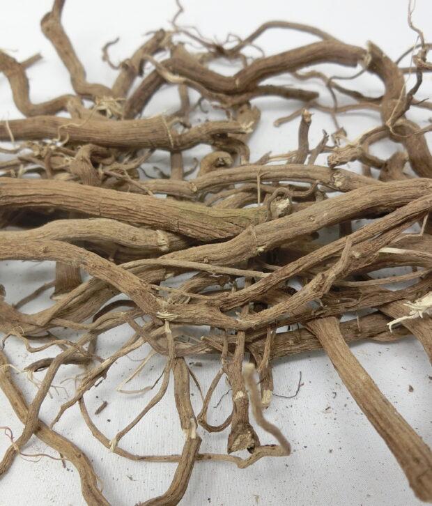 kava (Piper Methysticum) intera